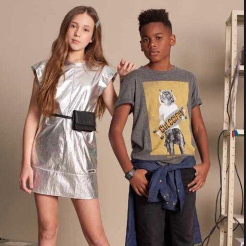 Camiseta Infantil Masculina Cinza Tigre Skate