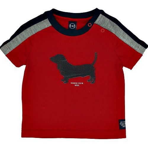 Camiseta Infantil Masculina Cachorrinho Emborrachado