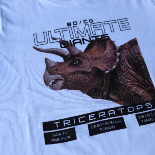 Conjunto Masculino Infantil Camiseta Dinossauro com Calça Moletom