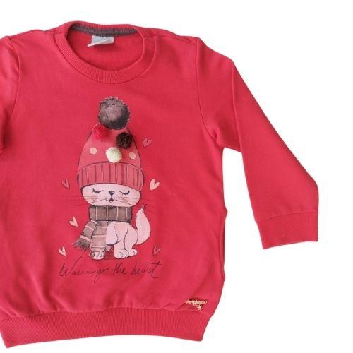Conjunto Infantil Feminino Blusa Moletom e Legging