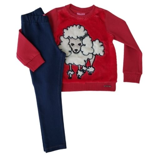 Conjunto Infantil Feminino Moletom Blusa Poodle e Legging