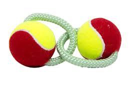 Brinquedo Push Dog com 2 Bolas LCM
