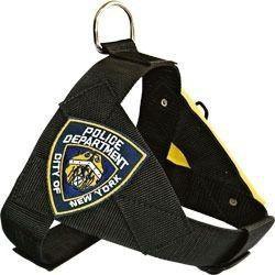 Conjunto Guia E Peitoral Security Policia