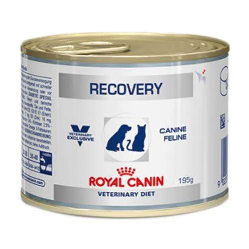Pate de Ração Úmida Royal Canin Veterinary Diet Recovery Wet - 195g
