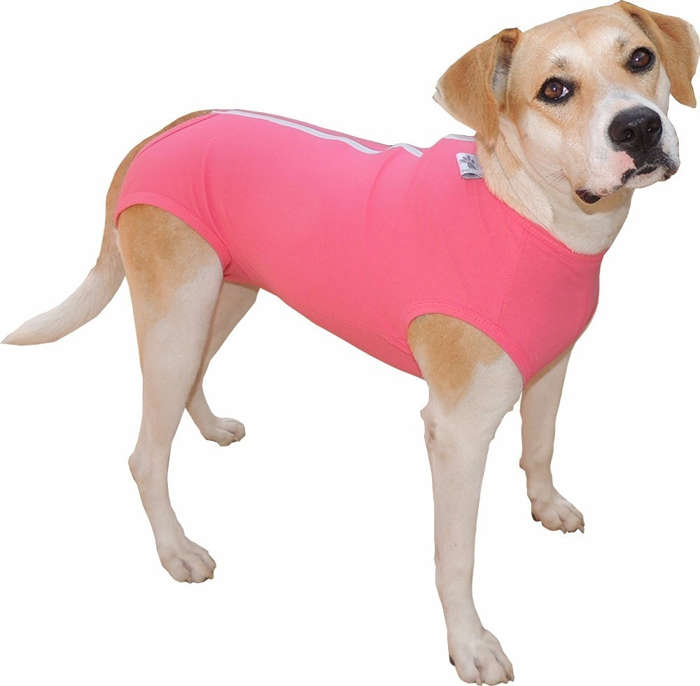 Roupa Pós-Cirúrgica Regular para Cães