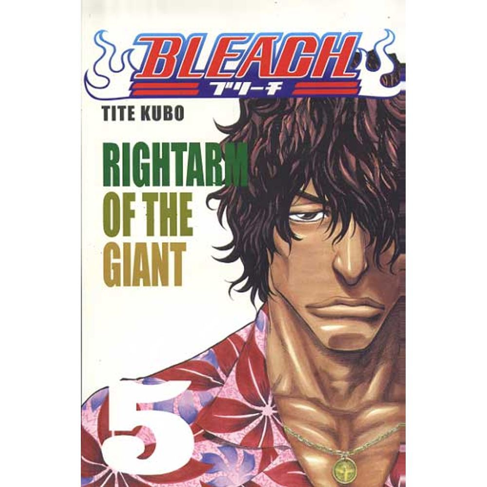 Bleach - Volume 05 - Usado