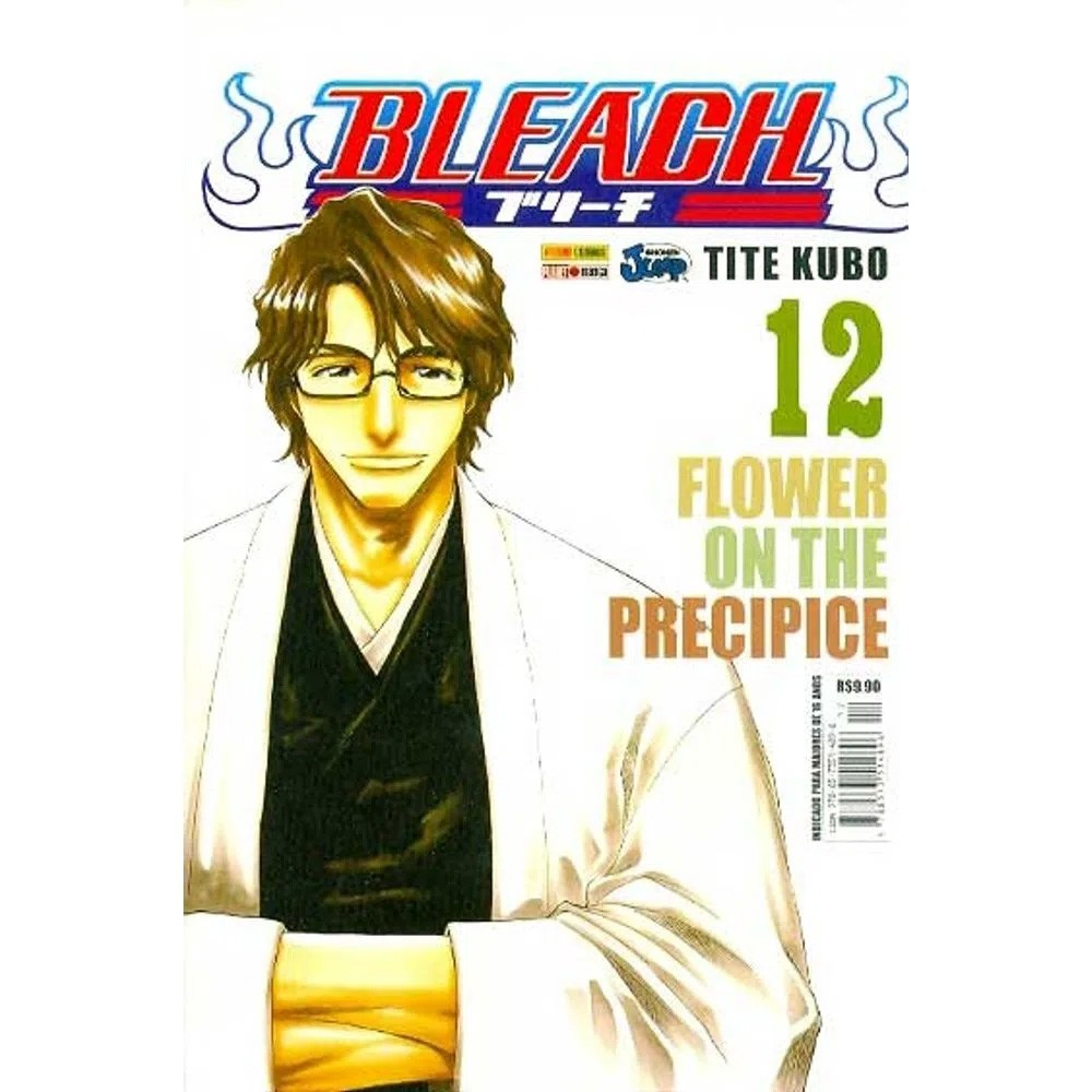 Bleach - Volume 12 - Usado