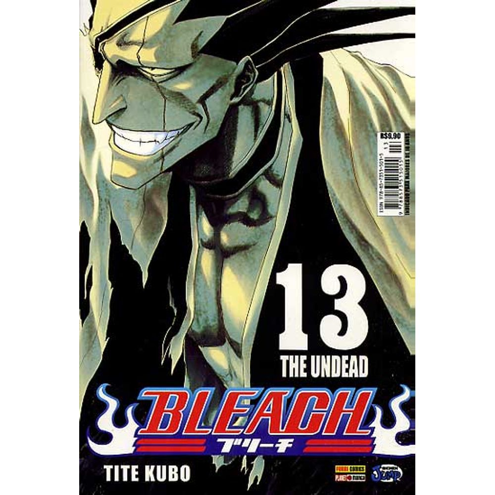 Bleach - Volume 13 - Usado