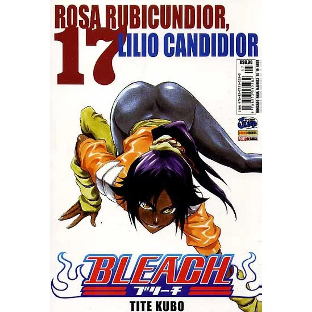 Bleach - Volume 17 - Usado