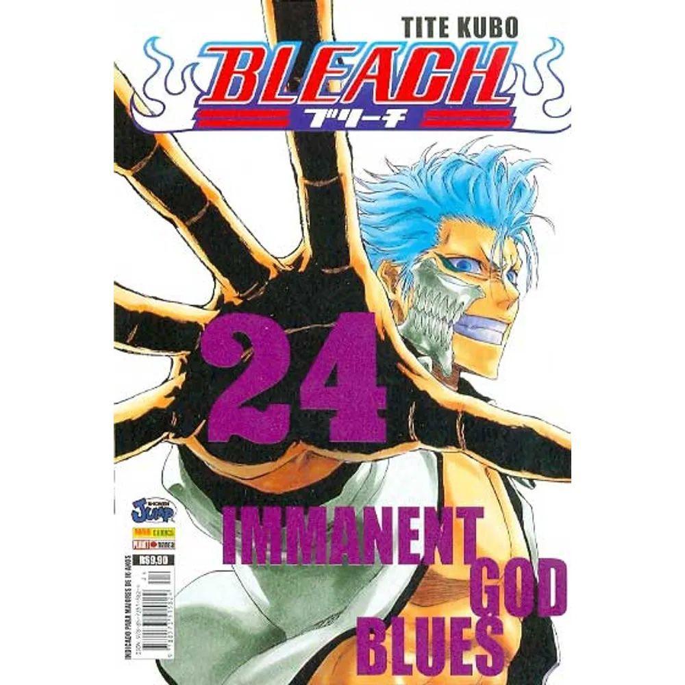 Bleach - Volume 24 - Usado