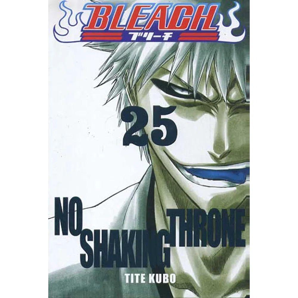 Bleach - Volume 25 - Usado