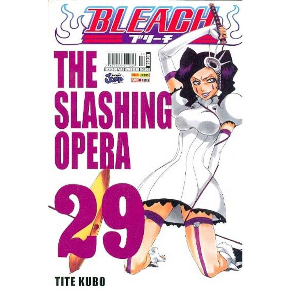 Bleach - Volume 29 - Usado