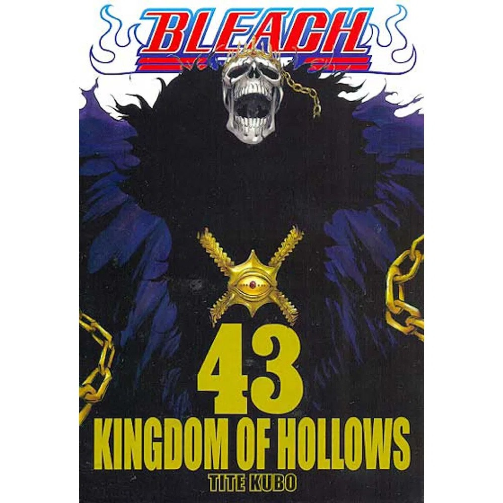 Bleach - Volume 43 - Usado