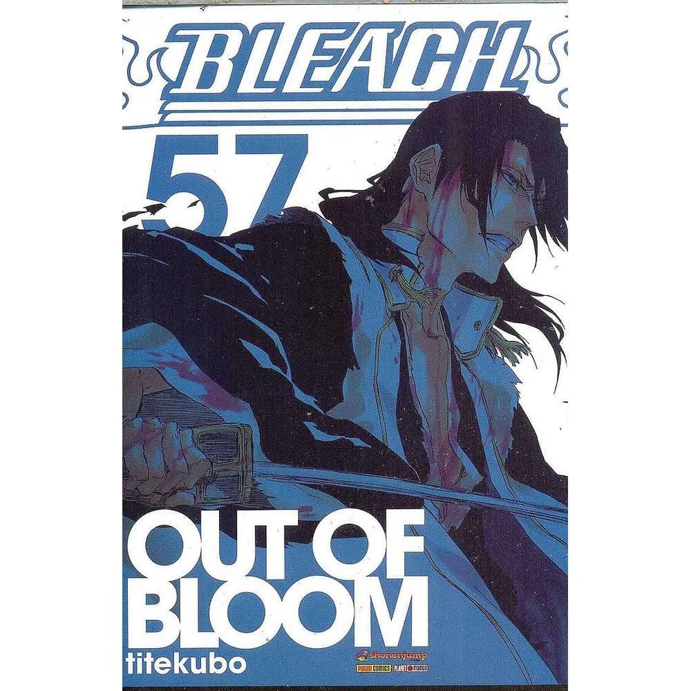 Bleach - Volume 57 - Usado