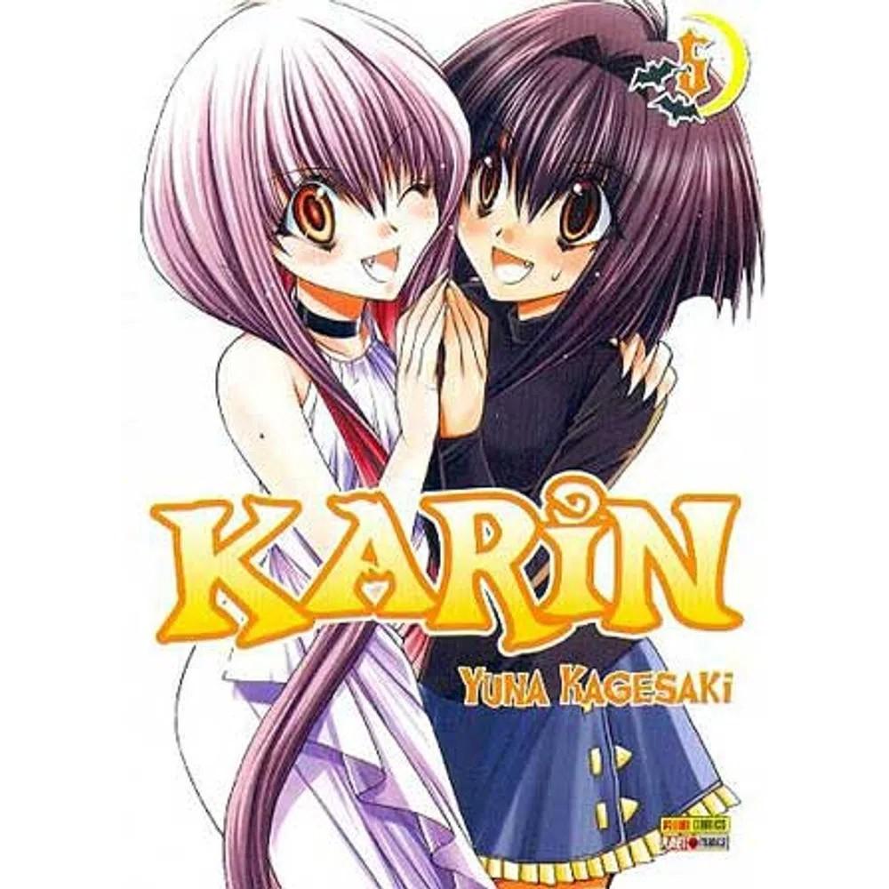 Karin - Volume 05 - Usado