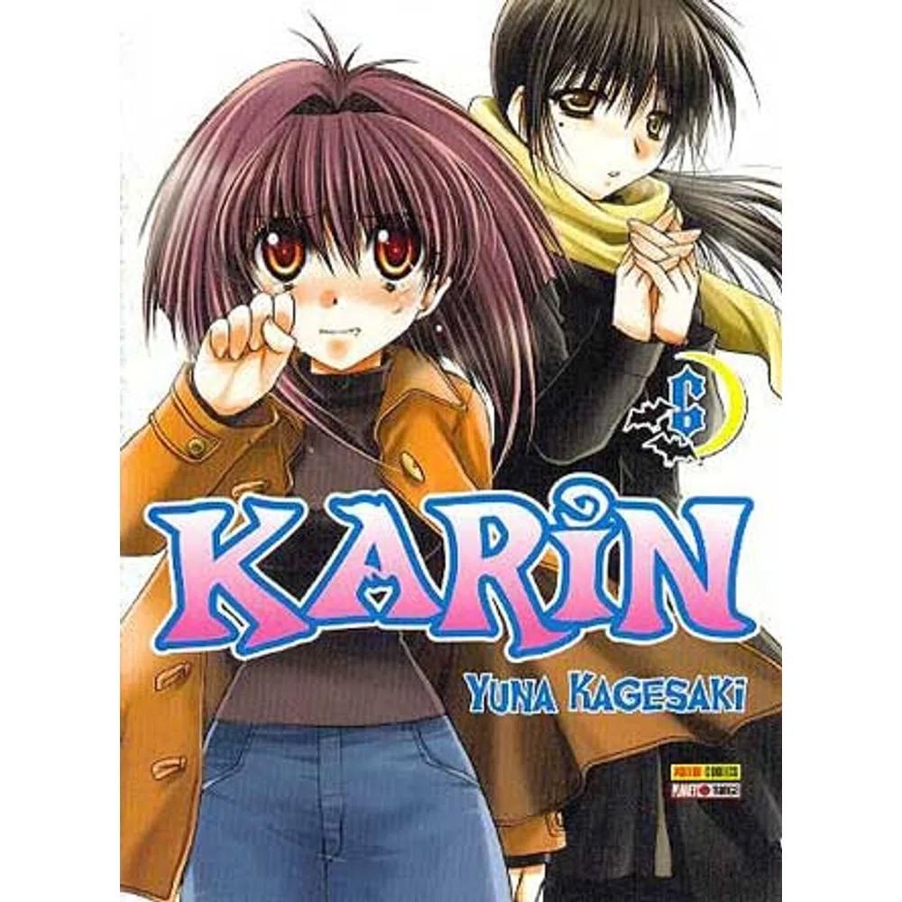 Karin - Volume 06 - Usado