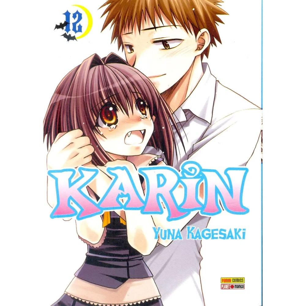 Karin - Volume 12 - Usado