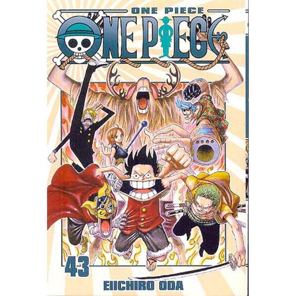 One Piece - Volume 43 - Usado