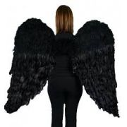 Asas de Anjo Negro - Penas Pretas