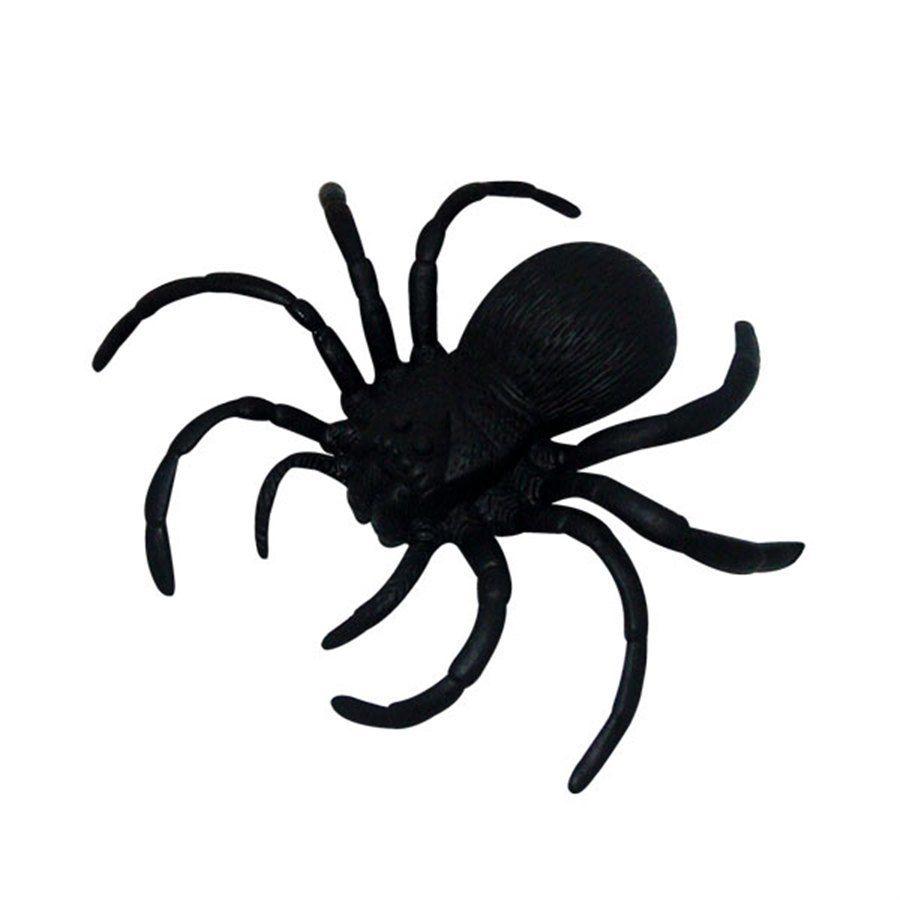 Aranha de Borracha