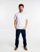 Kit 10 camisetas malha fria  PV cores SORTIDAS adulto