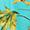 #125 floral verde