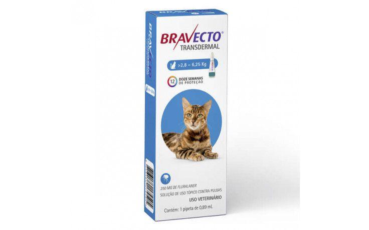 Bravecto Para Gatos Anti Pulgas E Carrapatos 2,8 A 6,25kg