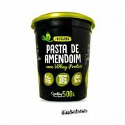 Pasta Amendoim com Rice Protein 500G Terra dos Grãos