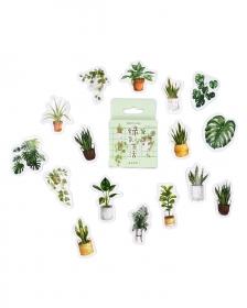 Caixinha de adesivos - Urban Jungle
