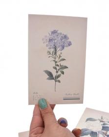 Postal - Flores Vintage