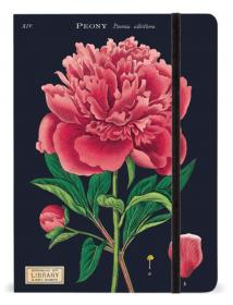PRÉ-VENDA LINHA SPECIALS Caderno Grande Botany (LEIA A DESCRIÇÃO)