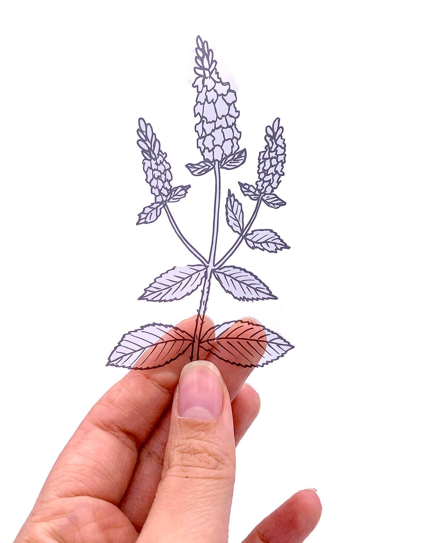 Adesivos - B&W plants II