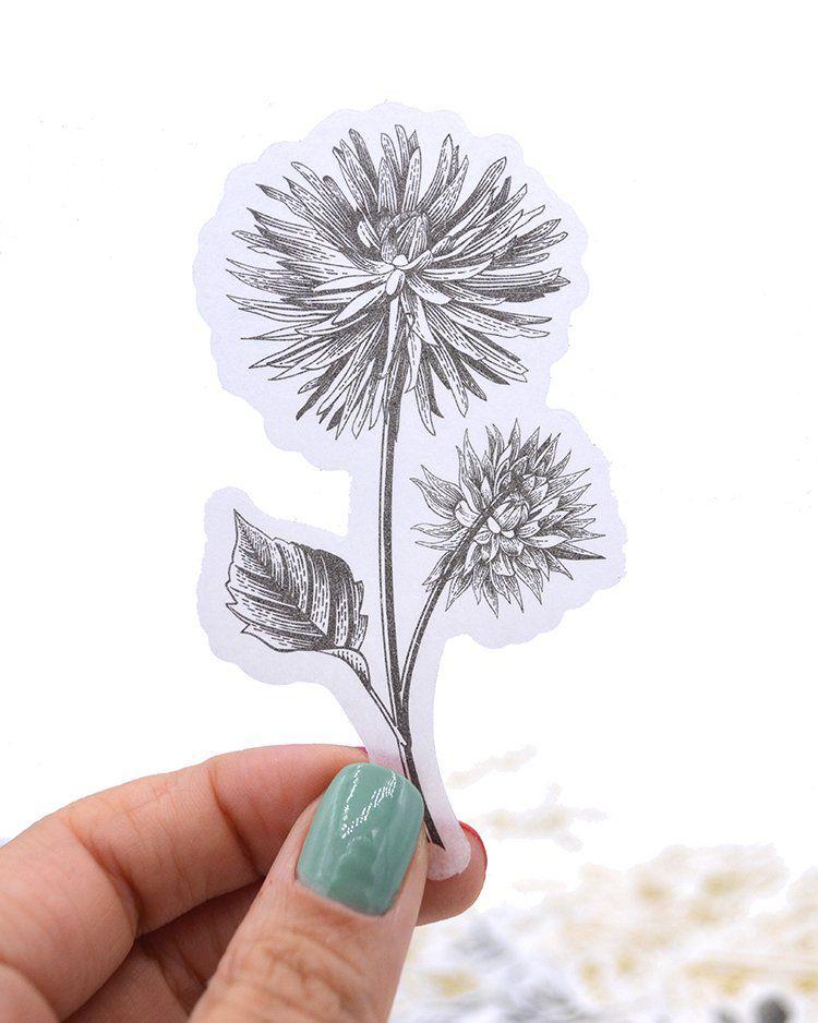 Adesivos - Golden Plants