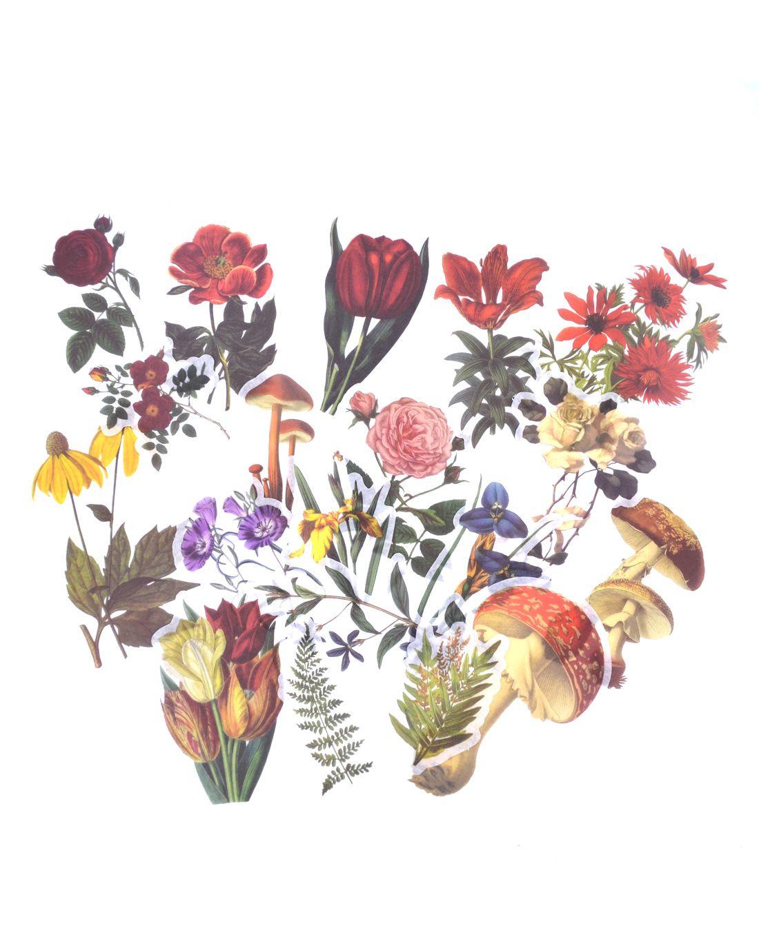 Adesivos - Vintage Flowers