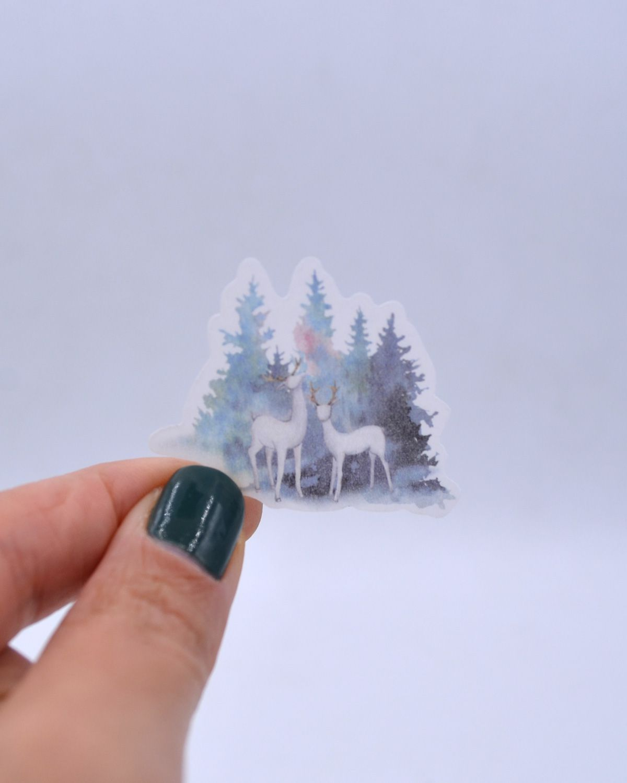 Caixinha de adesivos - Floresta