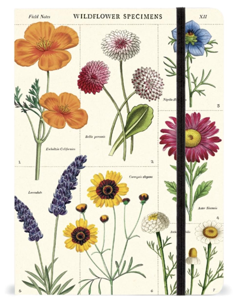 LINHA SPECIALS Caderno Grande Wildflower