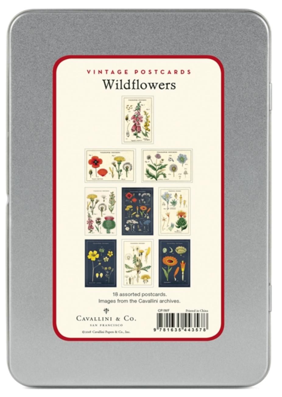 PRÉ-VENDA LINHA SPECIALS Postais Vintage Wildflowers (LEIA A DESCRIÇÃO)