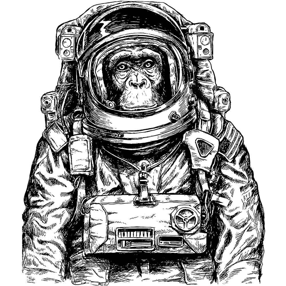 Camiseta Vespper Macaco Astronauta Branca
