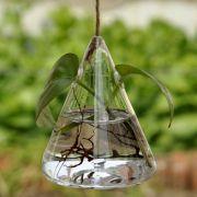 Vaso de Vidro Pendente Coxinha Para Flores