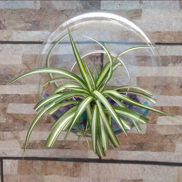 Vaso de Vidro Para Parede Ikebana