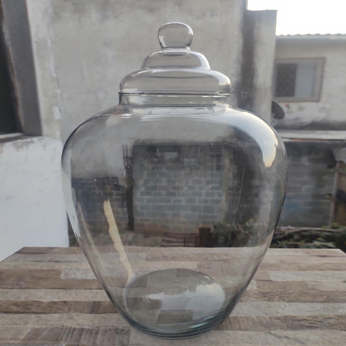Vaso de Vidro Para Terrário Pernanbuco Grande