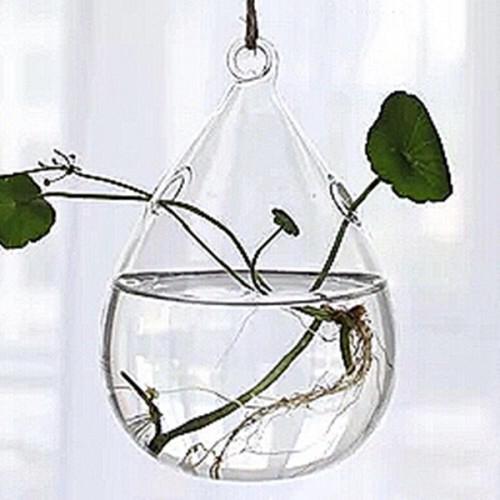 Vaso de Vidro Pendente Pêssego Para Flores