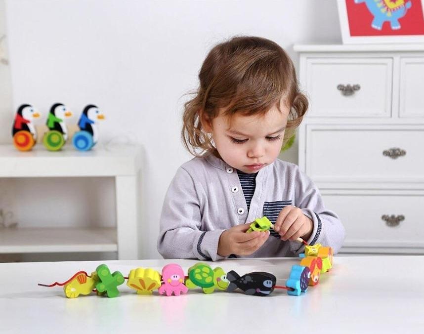 Blocos de Laço Mar, brinquedo de madeira da Tooky Toy - Cód. TKB511-B