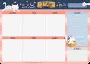 Bloco Planner Semanal Cartões Gigantes - Cats