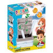 Steam Labirinto de Plantas • Xalingo