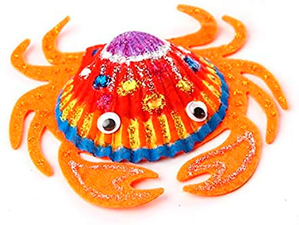 Arte em Conchas com Acessórios  - Jar Meló
