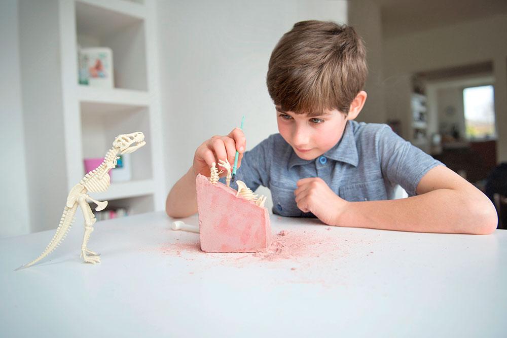Kit de Escavação Dinossauro Tiranossauro Rex