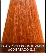 Coloração Creme Triskle Color Professional 8.34 Louro Claro Dourado Acobreado 50g