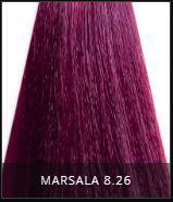 Coloração Creme Triskle Color Professional Intensive Repair 8.26 Marsala 50g.