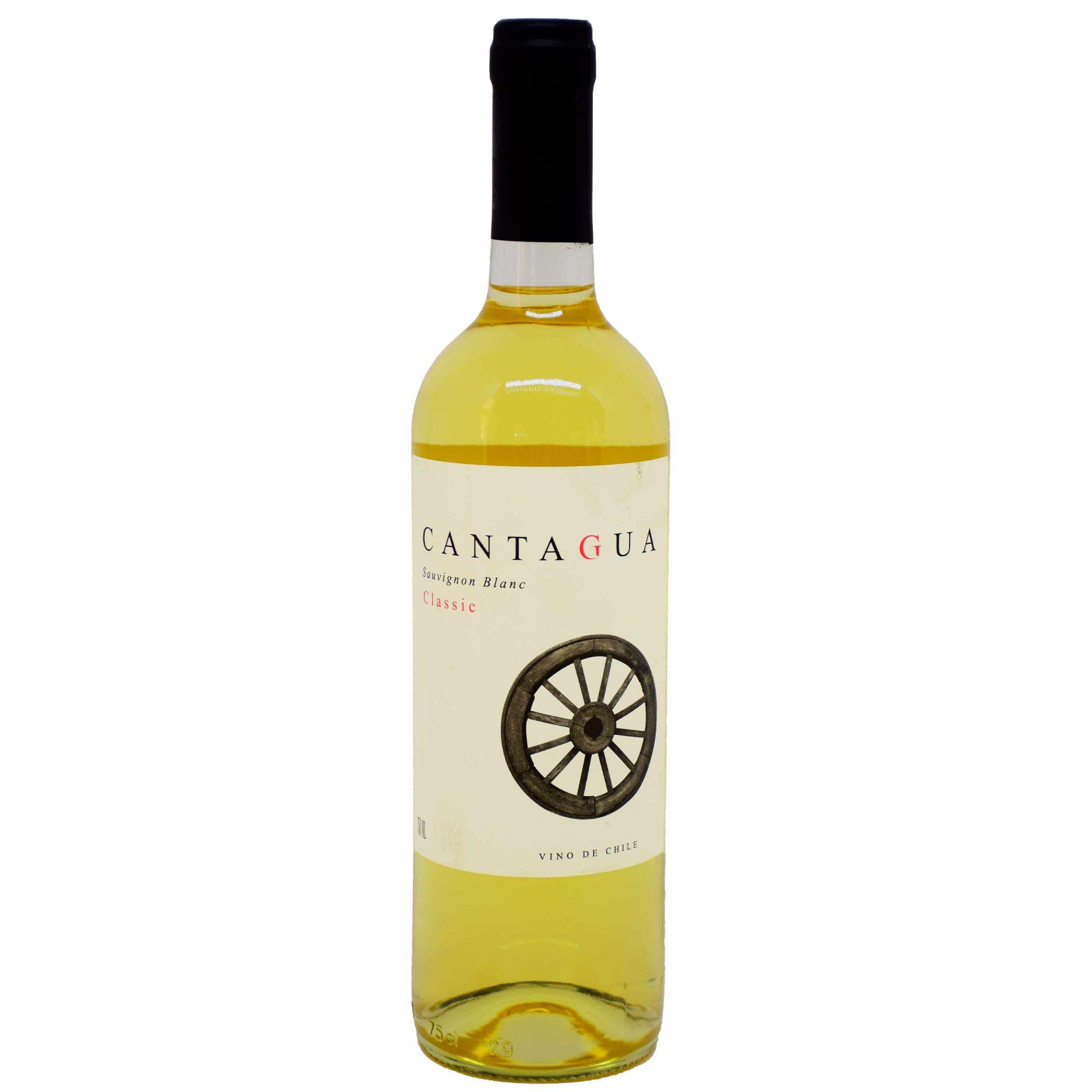 Cantagua Classico Sauvignon Blanc